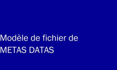 Modèle de fichier de METAS DATA pour vendre sa musique sur Internet